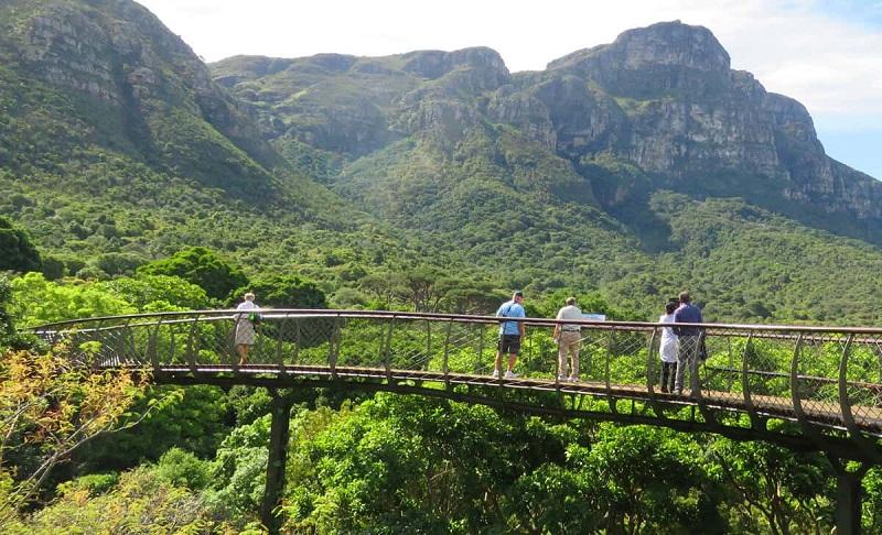 Kirstenbosh Botanical Gardens na Cidade do Cabo