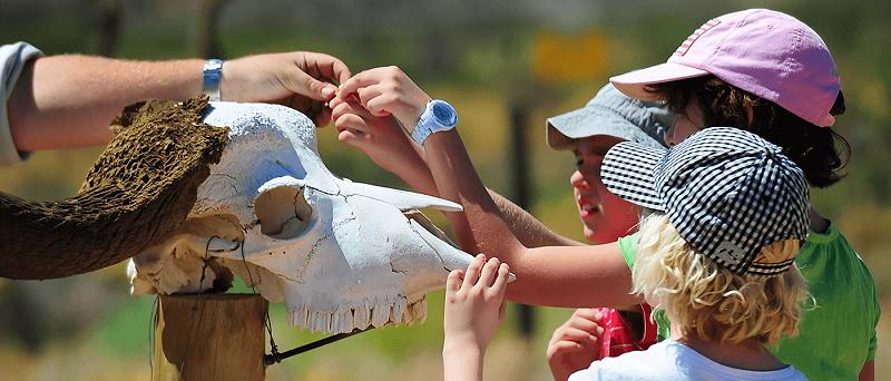 Crianças em Sanbona Wildlife Reservena Cidade do Cabo