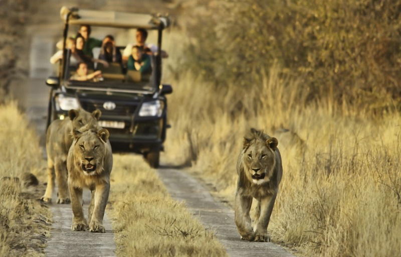Reservas na África do Sul