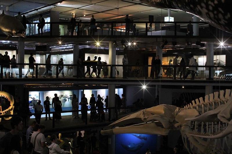 Melhores museus na Cidade do Cabo